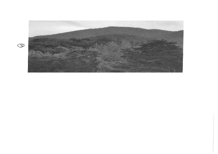 2020타경1584[1]