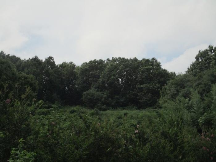 2020타경1648[1]
